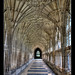 Cathedral walkway by Roger.C