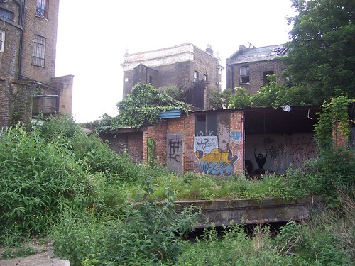 NLL Dalston Eastern Curve