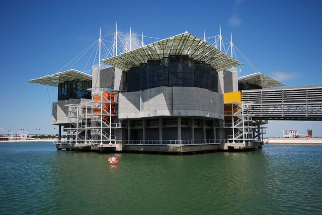 oceanarium lisbon lisbon s architecturally striking oceanarium at the ...