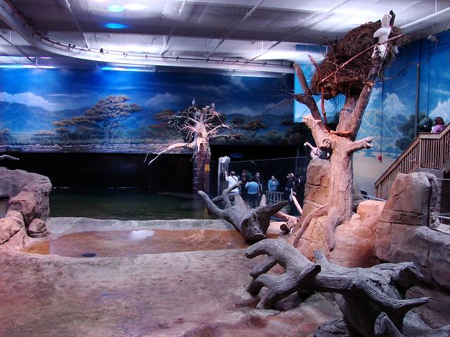 2008 03 16 Camden 008 New Jersey State Aquarium Flickr