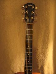 cuatro, string instrument, guitar, string instrument,