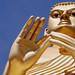 Golden Buddha statue by martien van asseldonk