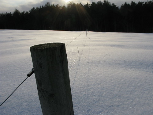 trees winter sunset snow fence wire vermont post randolphcenter canong9