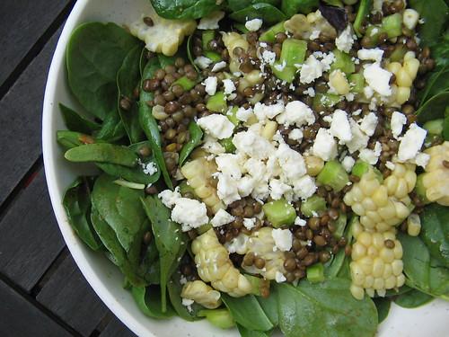 Ben 39 S Dinner Lentil Spinach Salad Recipe Middle West Meals