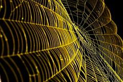 Explorer sept. 062008 #491             Spider and Spider Web Project 059~MMD