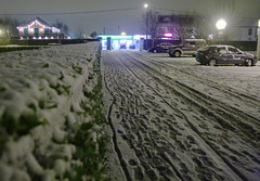 Snow, February 2009