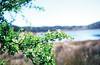"Laguna Grande, Archidona - ""Laguna Grande"", Archidona"