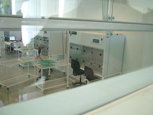 Sterile tissue culture lab