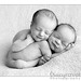 Carter & Jauquin...5 days old by Tracy Raver