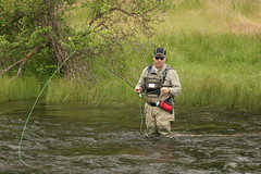 Northern california fly fishing guide service shasta trout for Hat creek fishing