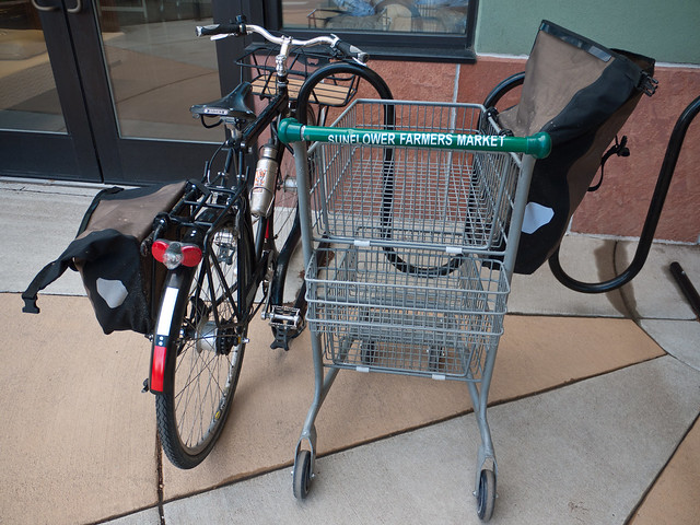 Shopping Cart and Bicycle