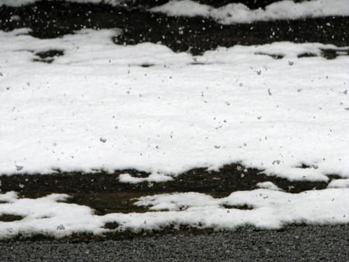 nieve flotante