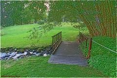 Arboretum Bridge 2