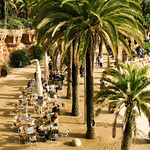 Palms of Guell