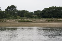 Youngs Island