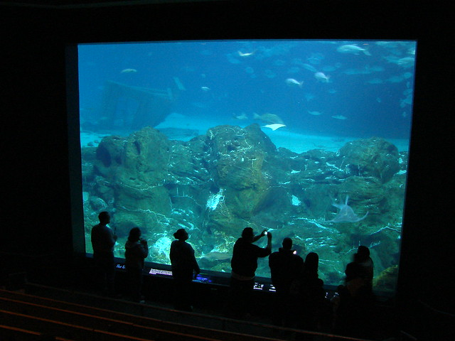 2008 03 16 Camden 029 New Jersey State Aquarium Explore
