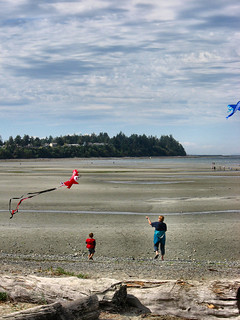 go fly a kite!!!