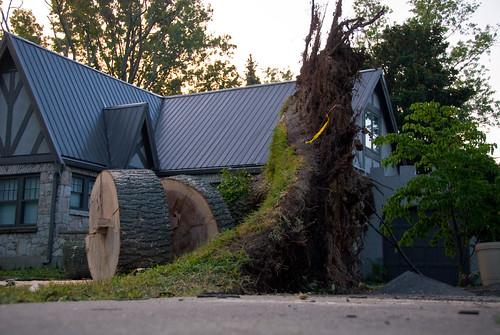 Hurricane Ike in Louisville