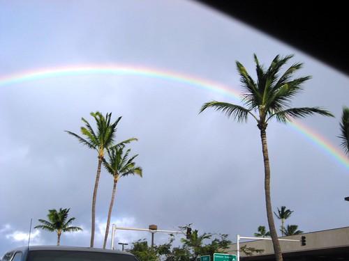 maui, hawaii, vacation, tropical, island, p… IMG_1663