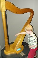 string instrument, clãrsach, play, harp, string instrument,