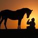 silhouette moment by majedphotos.com