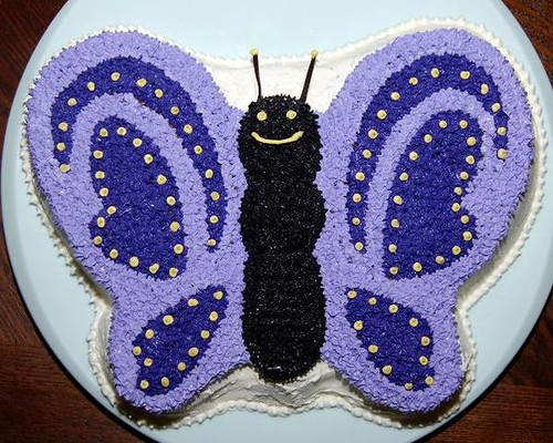 Butterfly Cake Pan Decorating Ideas : butterfly cake Flickr - Photo Sharing!