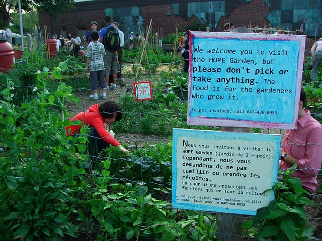 welcome to our garden of hope