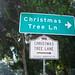 CHL# 990 Christmas Tree Lane