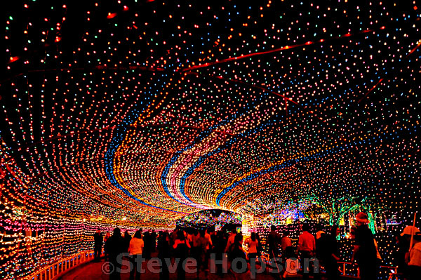 Trail of Lights, Austin | Flickr - Photo Sharing!