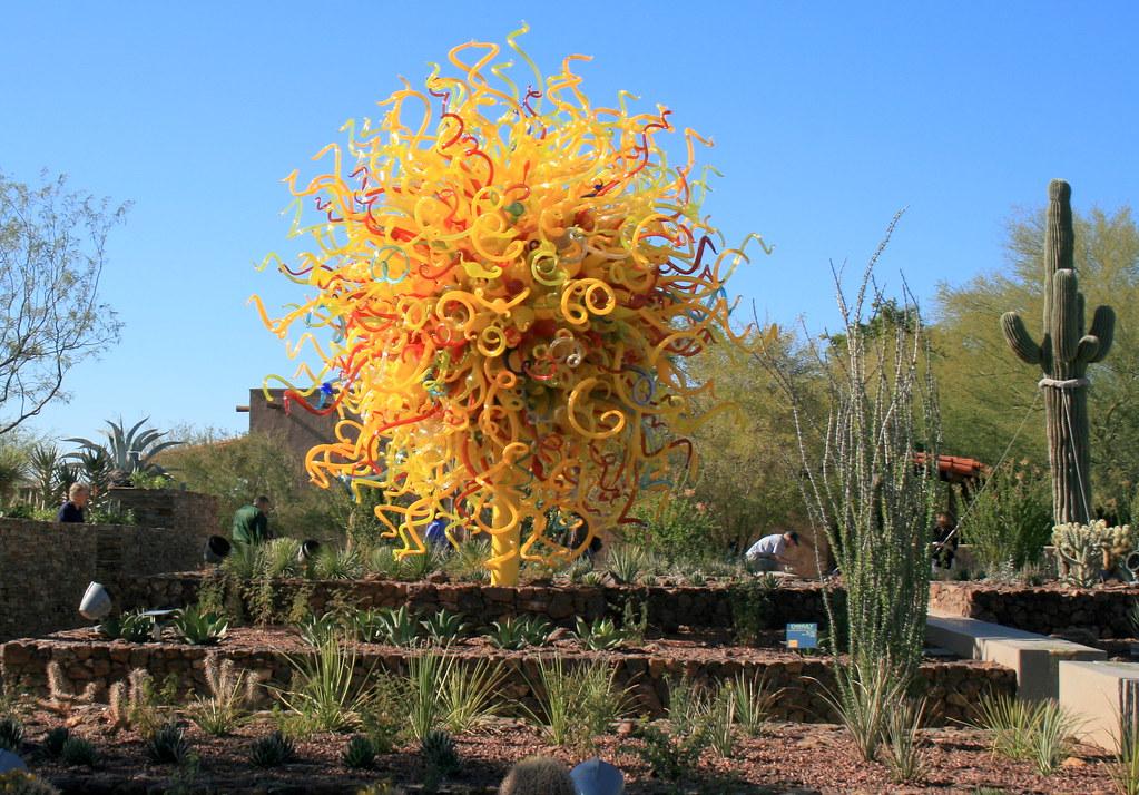 Desert Botanical Garden Phoenix Flickr Photo Sharing