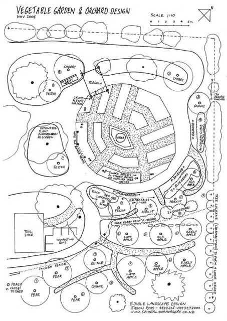 Orchard Layout Plans http://www.flickr.com/photos/edible_garden_design/3216446720/