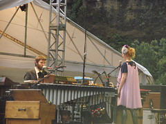 marimba, xylophone, musical instrument,