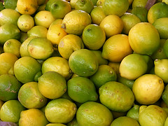 plant(0.0), citrus(1.0), key lime(1.0), meyer lemon(1.0), persian lime(1.0), yuzu(1.0), green(1.0), produce(1.0), fruit(1.0), food(1.0), tangelo(1.0), sweet lemon(1.0), bitter orange(1.0), citron(1.0), lime(1.0),