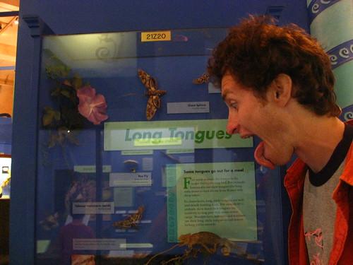 Long Tongues!