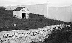 Skali's House