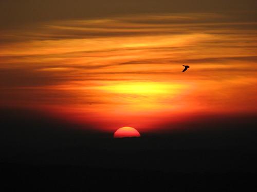 sunset silhoutte birh rema mizoram lunglei indiamizoramlungleiaizawlremachhakchhuakdawndusksunrisesunsethillscloudssunbirds