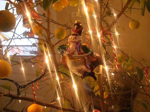 Nutcracker Ornaments on the Lemon Tree