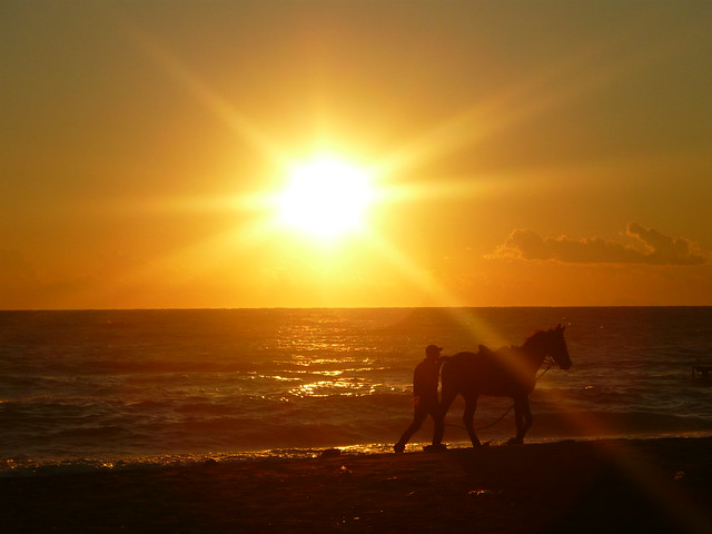 Horse,Man,Sun and Mediterranean-Antalya