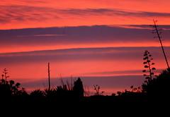 Sunset From Shubhash Chowk