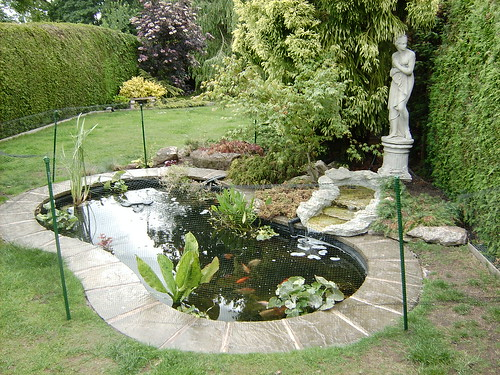 What to use around the edge of my pond pond design and for Cement fish pond
