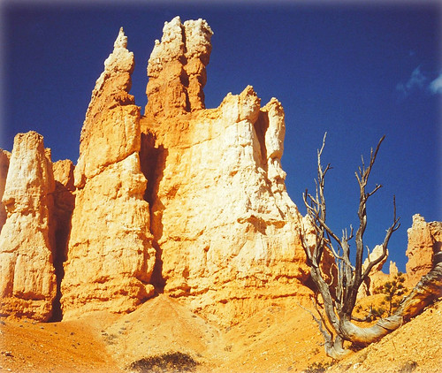 Miracle of Nature - Hoodoos in Queen's Garden - Bryce Canyon, Utah, USA