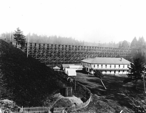 Spruce camp next to railroad trestle, near Newport, Oregon