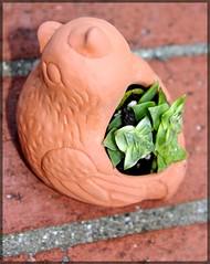 flower(0.0), produce(0.0), food(0.0), organ(0.0), carving(1.0), art(1.0), leaf(1.0), clay(1.0),