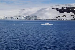 565 Antarctic Sound ijs met pinguin