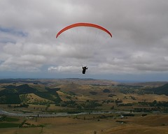 Napier with the Camps - Te Mata - View from the top Hang glider