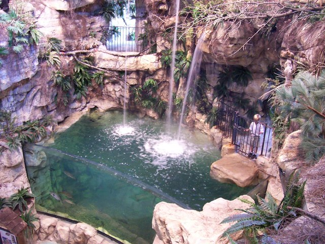 the waterfall and fish tank flickr photo sharing