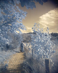 Formby, toy digicam infrared