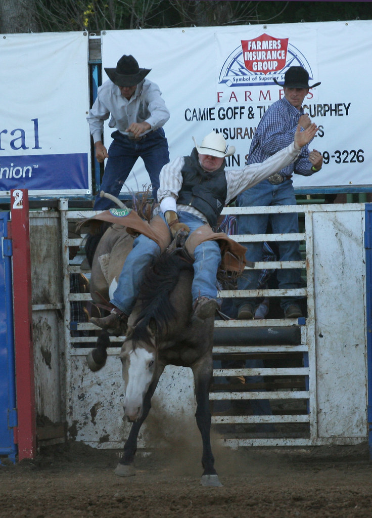 Philomath Frolic And Rodeo Craft Fair