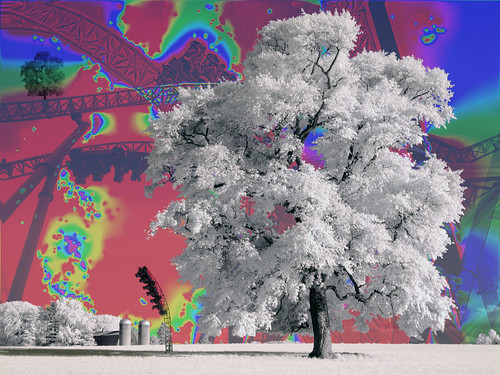 trees wallpaper color tree barn canon landscape ir arbol farm background træ boom silo fantasy árbol infrared rollercoaster psychedelic 木 albero tre coaster puu arbre árvore strom baum träd 树 foreground infravermelho copac infrarot 红外 ircamera mytree дерево drzewo 나무 شجرة g9 stablo infrarrojos 赤外線 红外线 infrapuna infrarood infrarouge дърво infrarossi δέντρο 紅外線 инфракрасный xdp inframerah אינפראאדום 紅外 पेड़ पेड combinezp infravörös xnitecanong9 backandforefantasy infračervené 적외선 υπερύθρων अवरक्त 적외선의