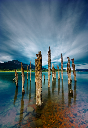 Columbia River Pilings